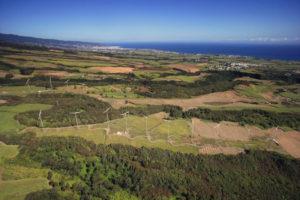 Découvrez les projets portés par le cluster de la transition énergétique à la Réunion